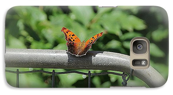 Galaxy Case featuring the photograph Question Mark Butterfly by Yumi Johnson