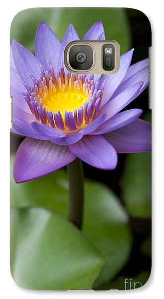 Radiance Galaxy S7 Case