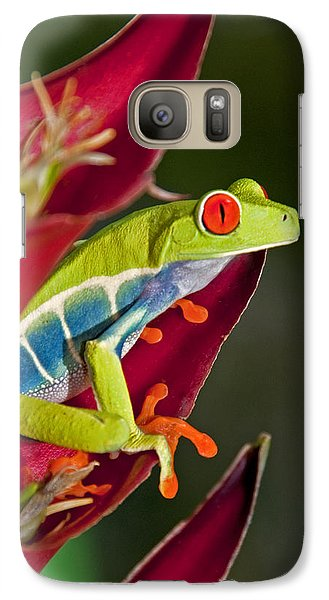 Galaxy Case featuring the photograph Red Eyed Tree Frog 2 by Dennis Cox WorldViews