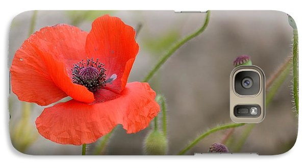 Galaxy Case featuring the photograph Red by Lisa L Silva