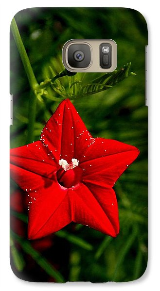 Galaxy Case featuring the photograph Scarlet Morning Glory by Ramabhadran Thirupattur