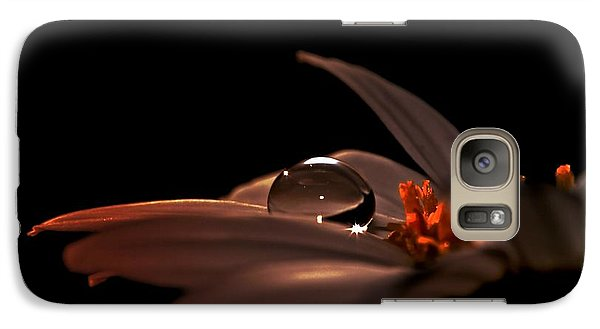 Galaxy Case featuring the photograph Shine by Michaela Preston