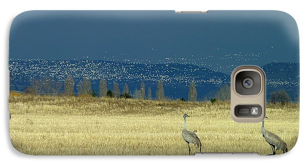 Galaxy Case featuring the photograph Snow Geese Invasion by Cindy Wright
