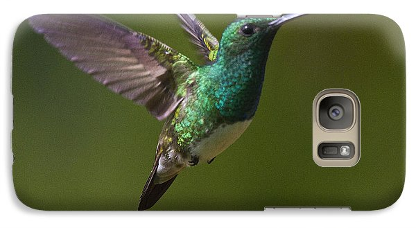 Snowy-bellied Hummingbird Galaxy S7 Case