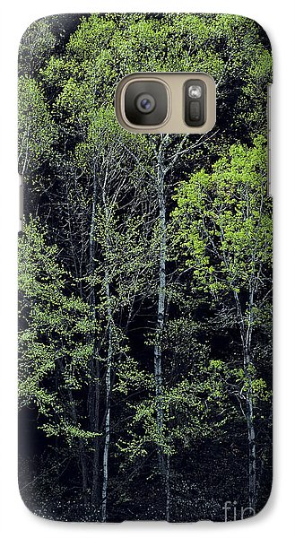 Galaxy Case featuring the photograph Spring Lights by Alan L Graham