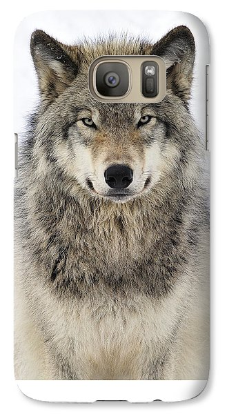 Wolves Galaxy S7 Case - Timber Wolf Portrait by Tony Beck