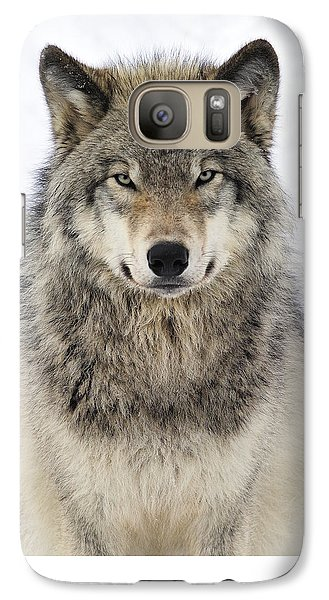 Timber Wolf Portrait Galaxy S7 Case