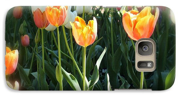 Galaxy Case featuring the photograph Tulips by Therese Alcorn