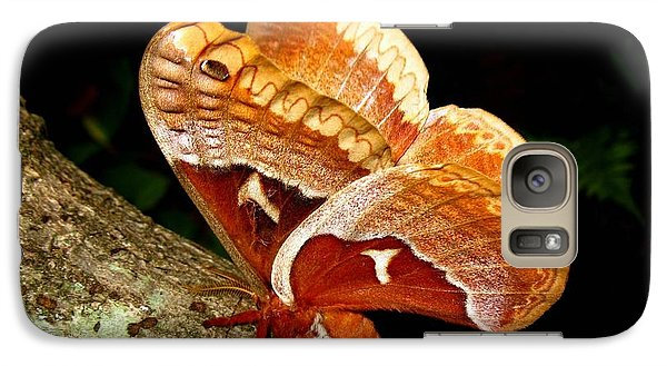 Galaxy Case featuring the photograph Tuliptree Silkmoth by William Tanneberger
