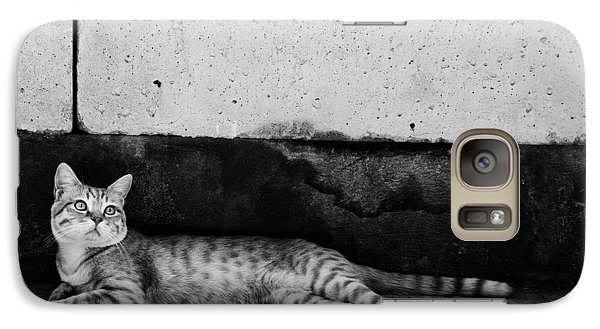 Galaxy Case featuring the photograph Untitled by Laura Melis