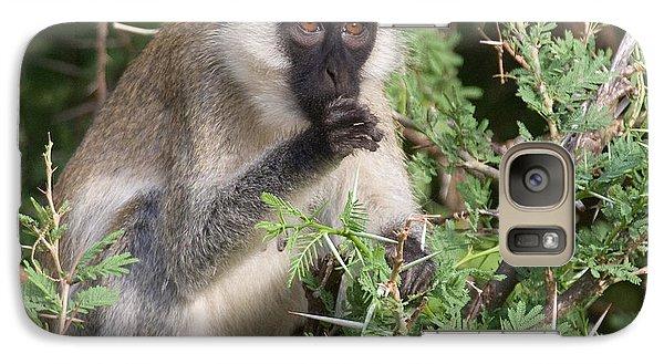 Galaxy Case featuring the photograph Vervet Monkey by Chris Scroggins