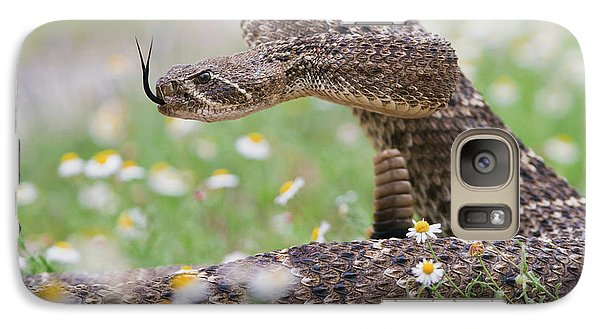 Western Diamondback Rattlesnake Galaxy S7 Case by Larry Ditto