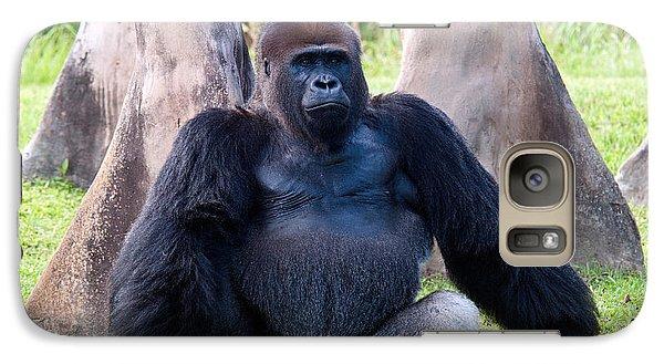 Western Lowland Gorilla Galaxy S7 Case by Mark Newman