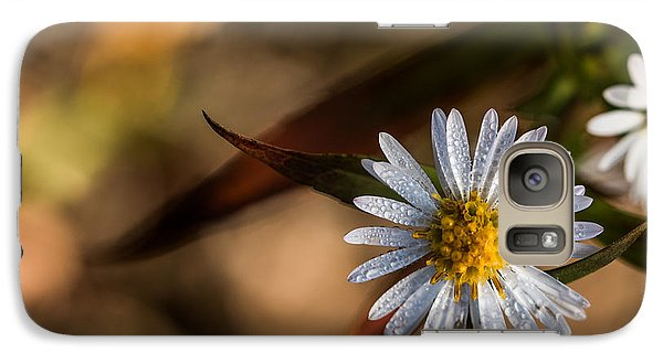 Galaxy Case featuring the photograph White Flower Dew-drops Autumn by Jivko Nakev