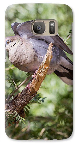 Galaxy Case featuring the photograph White-winged Dove by Beverly Parks