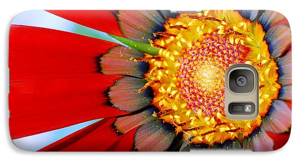 Galaxy Case featuring the photograph Zinnia In Red by Wendy Wilton