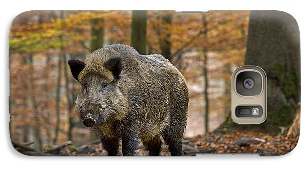 Galaxy Case featuring the photograph 121213p283 by Arterra Picture Library
