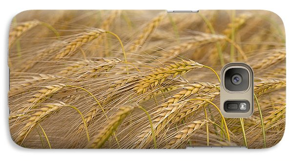 Galaxy Case featuring the photograph 130109p155 by Arterra Picture Library