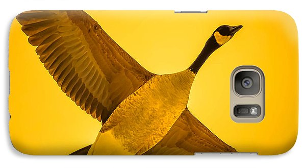 Galaxy Case featuring the photograph Canada Goose by Brian Stevens