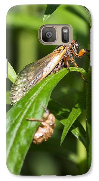 Galaxy Case featuring the photograph 17 Year Itch by Rebecca Sherman