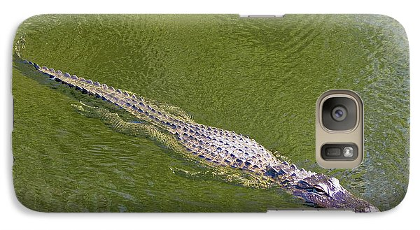 Usa, Florida, Everglades National Park Galaxy S7 Case by Jaynes Gallery