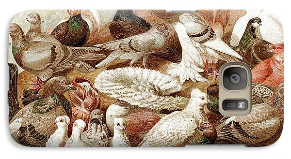 1870 Domestic Fancy Pigeon Breeds Darwin Galaxy S7 Case by Paul D Stewart