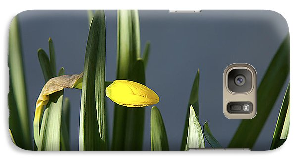 Galaxy Case featuring the photograph 1st Daff by Joe Schofield