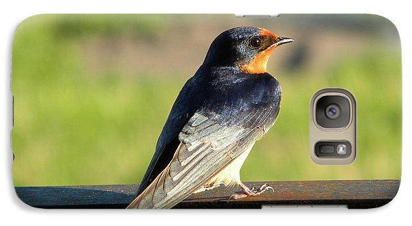 Galaxy Case featuring the photograph Barn Swallow by James Petersen