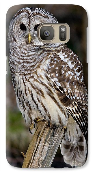 Galaxy Case featuring the photograph Barred Owl by Les Palenik