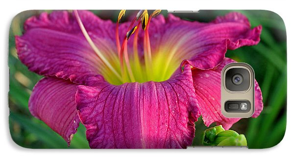 Galaxy Case featuring the photograph Bela Lugosi Daylily by Suzanne Stout
