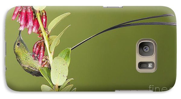 Galaxy Case featuring the photograph Black-tailed Train Bearer Hummingbird by Dan Suzio