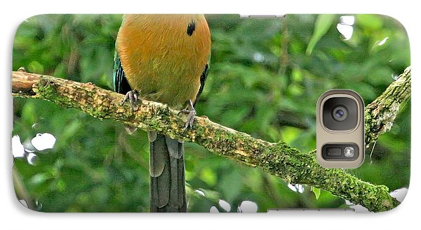 Galaxy Case featuring the photograph Blue-crowned Motmot by Peggy Collins