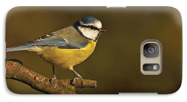 Galaxy Case featuring the photograph Blue Tit  by Paul Scoullar
