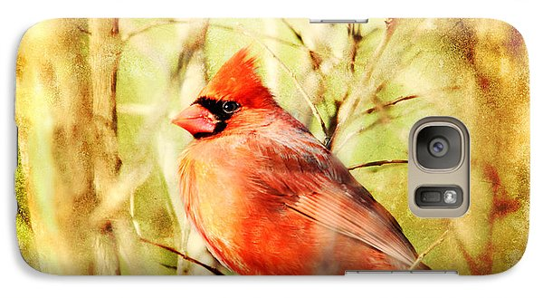 Galaxy Case featuring the photograph Cardinal by Trina  Ansel