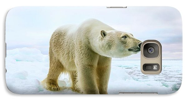 Close Up Of A Standing Polar Bear Galaxy Case by Peter J. Raymond