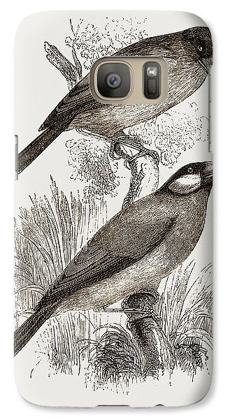 Crossbills Galaxy S7 Case by Litz Collection