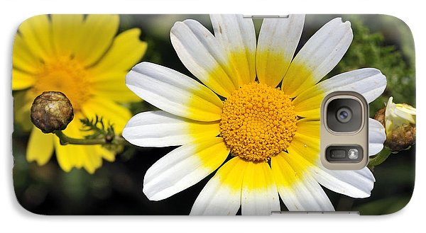 Galaxy Case featuring the photograph Crown Daisy Flower by George Atsametakis
