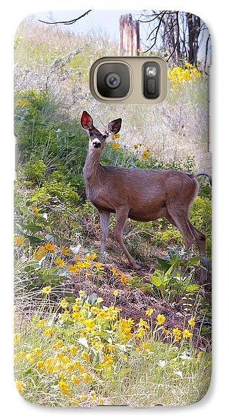Galaxy Case featuring the photograph Deer In Wildflowers by Athena Mckinzie