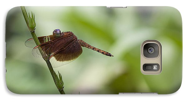 Galaxy Case featuring the photograph Dragonfly by Zoe Ferrie