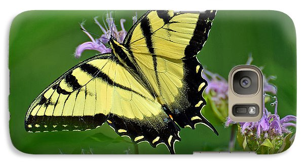 Galaxy Case featuring the photograph Eastern Tiger Swallowtail by Rodney Campbell
