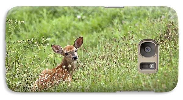 Galaxy Case featuring the photograph Fawn by Jeannette Hunt