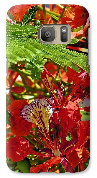 Galaxy Case featuring the photograph Flamboyan by Lilliana Mendez