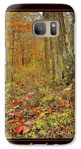 Galaxy Case featuring the photograph Forest Interior Autumn Pocono Mountains Pennsylvania by A Gurmankin