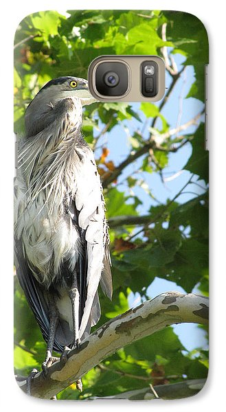 Galaxy Case featuring the photograph Great Blue Heron by Anita Oakley