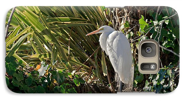 Galaxy Case featuring the photograph Great Egret by Kate Brown