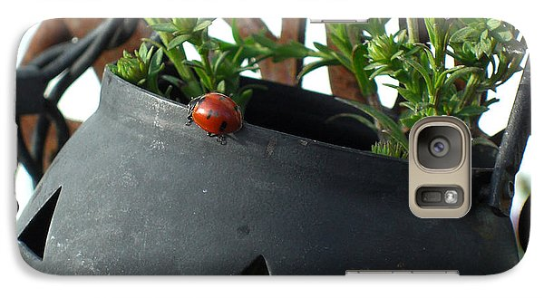 Galaxy Case featuring the photograph Halloween Ladybug by Heidi Manly