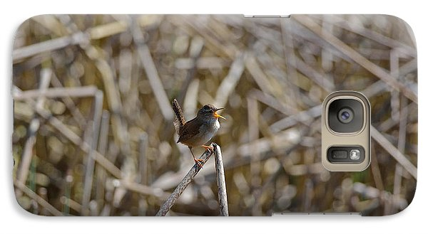 Galaxy Case featuring the photograph Here I Am - Marsh Wren by Kathy King