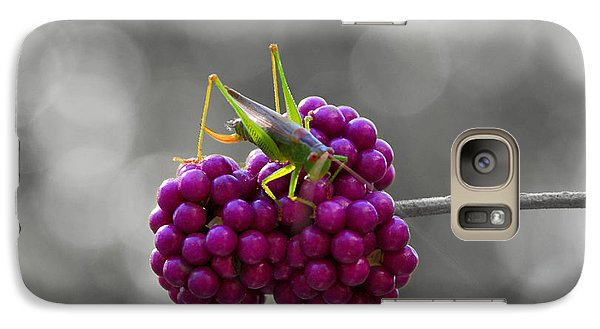Galaxy Case featuring the photograph Lunch Time by Linda Segerson