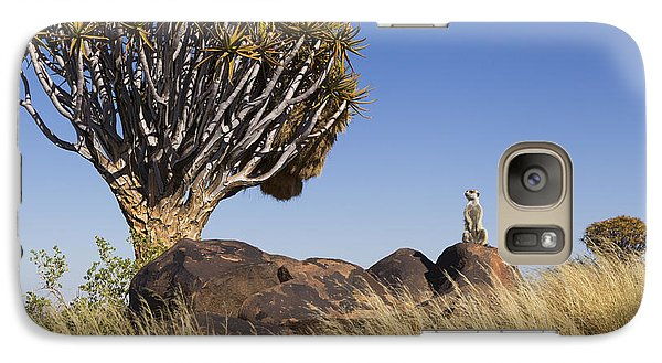 Meerkat Galaxy S7 Case - Meerkat In Quiver Tree Grassland by Vincent Grafhorst
