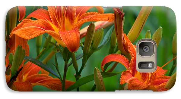 Galaxy Case featuring the photograph Orange Lilly by Cathy Shiflett